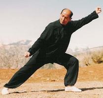 Il M° George Xu in una tecnica di Lan Shou. Notare il perfetto all'ineamento strutturale.
